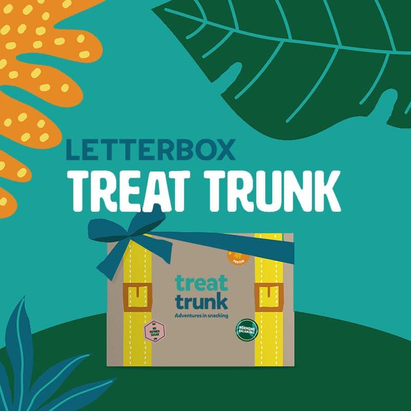 Letterbox Treat Trunk Healthy Vegan Gift Snack Box